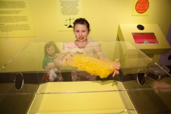 """Sarah Conley, a visitor to the """"Big Food: Health, Culture and the Evolution of Eating,"""" exhibit at the Yale Peabody Museum of Natural History in New Haven, Conn., grimaces as she handles the equivalent of five pounds of human fat while her sister, Gloria, looks on.  (Yale School of Public Health)"""