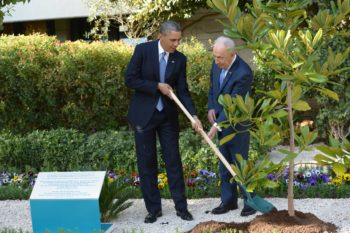 President Obama planting a tree with Israeli President Shimon Peres at Peres' Jerusalem residence, March 20, 2013.  (Moshe Milner/GOP)