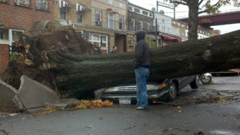 Photos of storm damage, like this one from Astoria, Queens, were shared widely on Facebook and other websites.  (Peter Romano via Creative Commons)